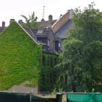 bepflanzte-hausfassade-berger-strasse-1