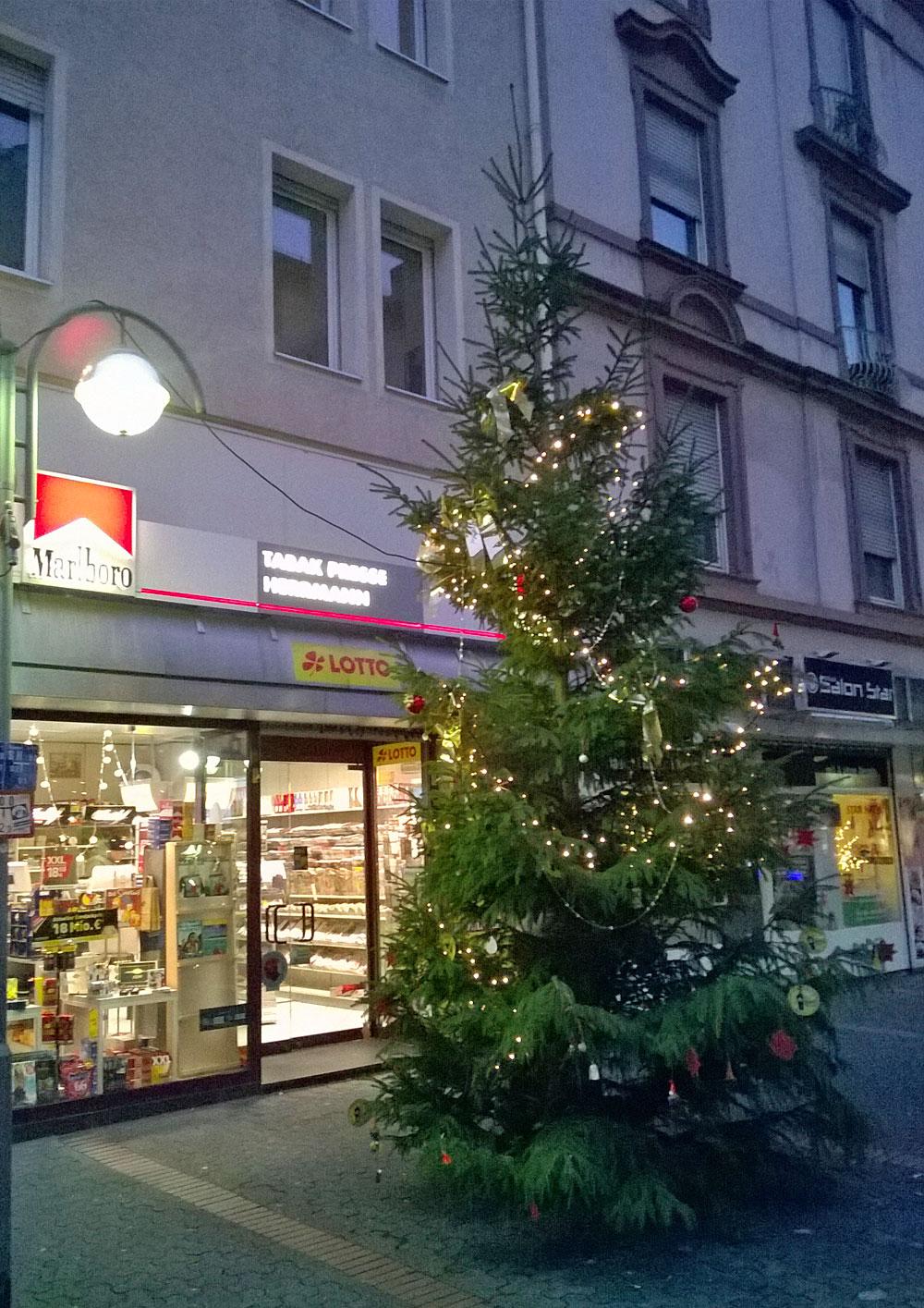 Weihnachtsbaum in Bornheim Mitte
