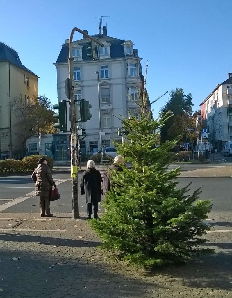 weihnachtsbaum-berger-strasse